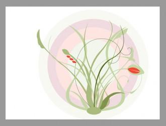fiori – flowers