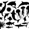 sagome di pesci – fishes sillhouette