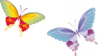 farfalle – butterflies