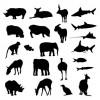 sagome di animali – animal sillhouettes