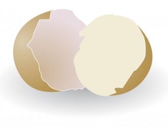 uova rotte – broken eggs