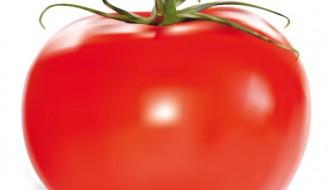 podomoro – tomato