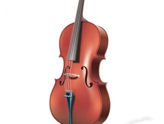 violino – violin