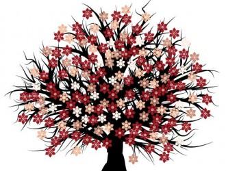 albero fiorito – blossom tree