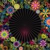 cornice floreale – floral frame_1