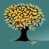 albero – tree