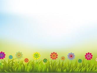 cielo, erba, fiori – sky, grass, flowers