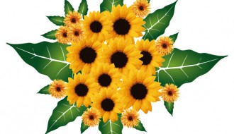 bouquet girasoli – sunflowers bouquet