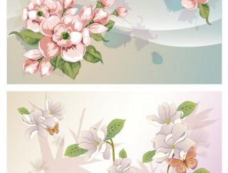 composizione di fiori – flower compositions