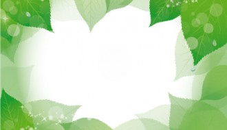 cornice con foglie – leaves frame