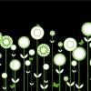 fiori stilizzati – stylized flowers