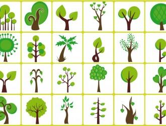 alberi – trees_5