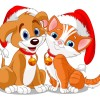 cane e gatto natalizi – Christmas dog and cat