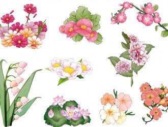 fiori rosa – rose flowers_2
