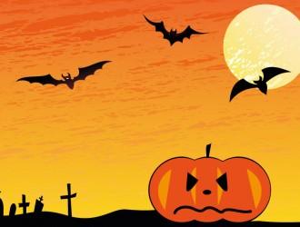 halloween, zucca, pipistrelli – pumpkin, bats