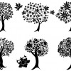 6 alberi – decorative trees