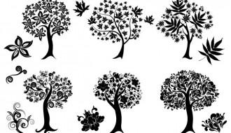 6 alberi – decorative trees