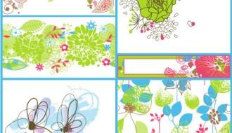 fiori vari – beautiful flowers