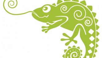 camaleonte – chameleon