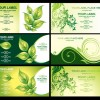 6 biglietti visita eco – green eco business-card