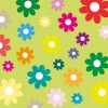 sfondo fiori colorati – colored flowers background