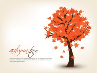 autumn tree – albero autunno