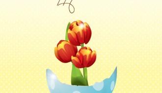 Tulipani Pasqua – Easter tulips
