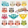 17 gufi – owls