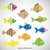 11 pesci colorati – colored fishes