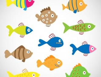 11 pesci colorati – colored fishes
