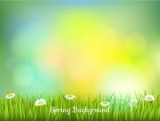 sfondo sfocato primavera – blurred spring background