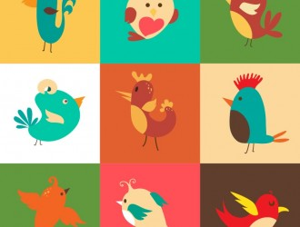 9 uccelli – cartoon birds