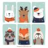 6 animali vestiti inverno – animals winter dresses