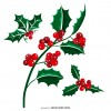 vischio Natale – Christmas mistletoe