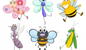 6 insetti – cartoon insects