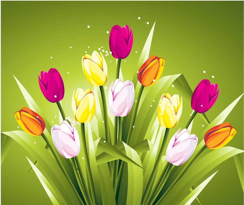 Tulipani Colorati Colored Tulips Vettoriali Gratis It