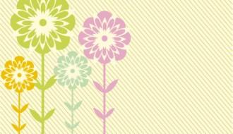 fiori – flowers_4