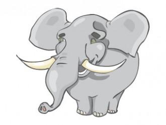 elefante – elephant
