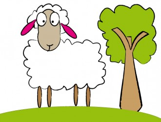 pecora – sheep