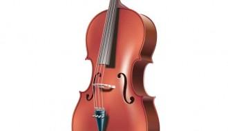 violoncello – cello