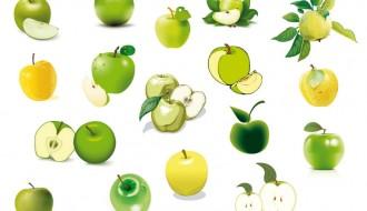 mele verdi e gialli – green and yellow apples