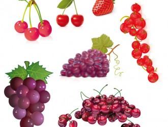 frutta – fruits