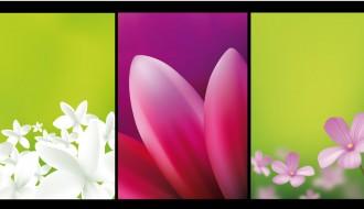 biglietti floreali – floral card