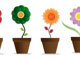 fiori nei vasi – flowers in vases