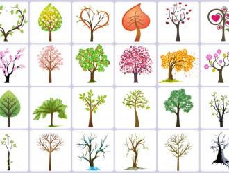 alberi – trees_3