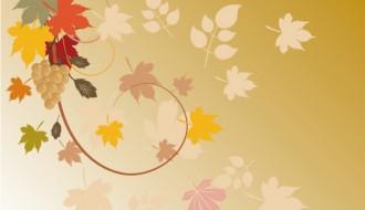 foglie autunnali – autumn leaves