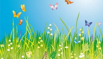 prato con farfalle – meadow with butterflies
