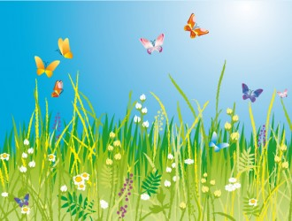 prato con farfalle – meadow with butterflies