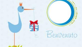 benvenuto neonato con cicogna – newborn welcome with stork