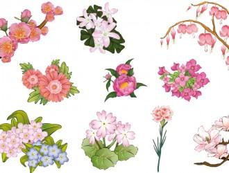 fiori rosa – rose flowers_1